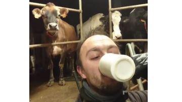 Sébastien, éleveur laitier du Nord, mixe campagne promotionnelle etgénérosité