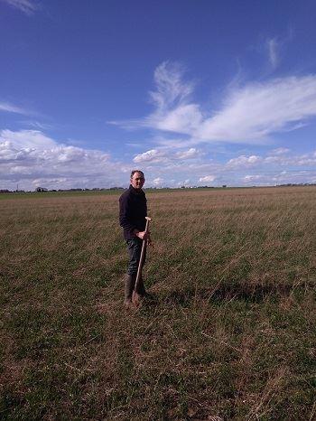 Philippe Budin dans une parcelle de blé semée sous couvert de cameline