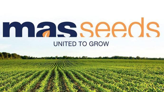 Logo de la marque Mas Seeds