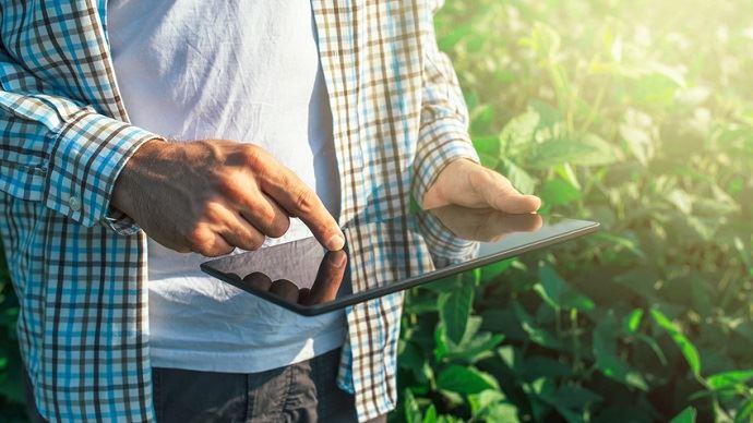 Agriculteur avec une tablette dans un champ
