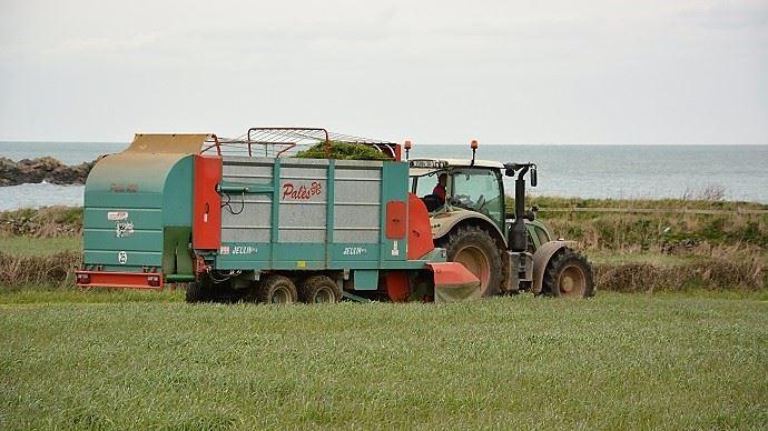 L'affouragement en vert permet de conserver une part importante d'herbe dans la ration sans faire pâturer les animaux.