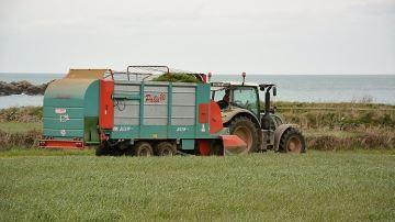 L'herbe qui vient à la vache: c'est bien mais ça doit rester rentable!