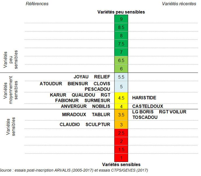 Classement des variétés de blé dur selon leur résistance au risque Don - Synthès epluriannuelle nationale (2005-2017)