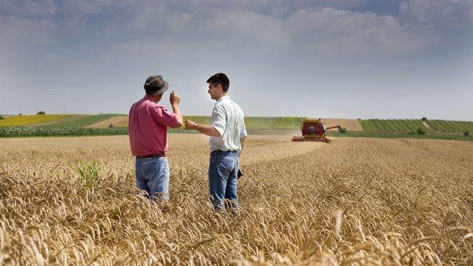 Un climat mitigé : inquiétude pour la qualité des récoltes