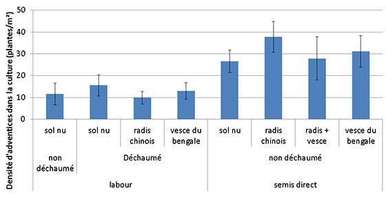 Impact de la gestion de l'interculture sur la densité d'adventices dans la culture suivante (suivis réalisés entre 2011 et 2015)