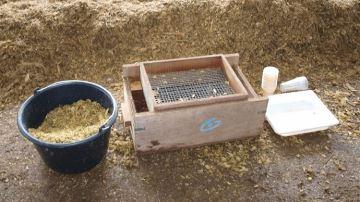 Six rendez-vous pour les éleveurs autour de la nutrition et du maïs