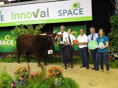 Meilleur Animal Space 2018