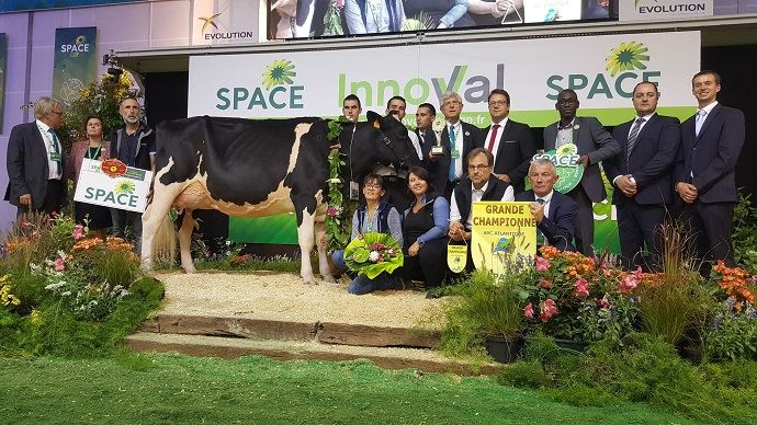 La grande championne du Space 2018 en Holstein.