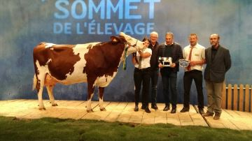 Fany, sacrée Grande Championne du concours Montbéliarde