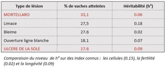 L'héritabilité des lésions de pieds chez la Normande est parfois supérieure à la fertilité, la longévité et les cellules.