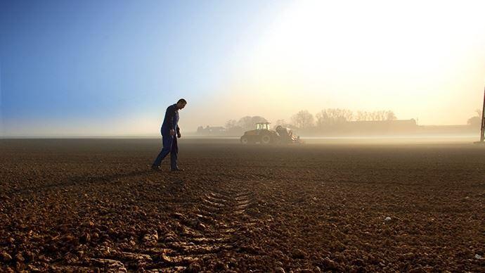 agriculteur champs aurore