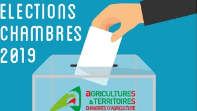 Les agriculteurs et tous les électeurs pourront voter dès réception du matériel de vote par correspondance ou dès l'ouverture de la plateforme de vote électronique prévue le 14 janvier 2019.
