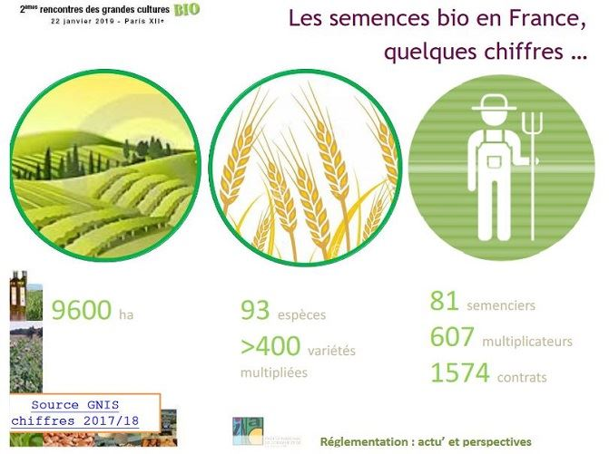Les semences bio en France