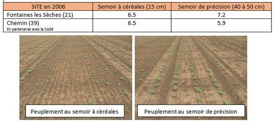 Peuplements en pieds obtenus selon le matériel de semis