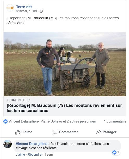 post facebook reintroduction des moutons en zones cerealieres