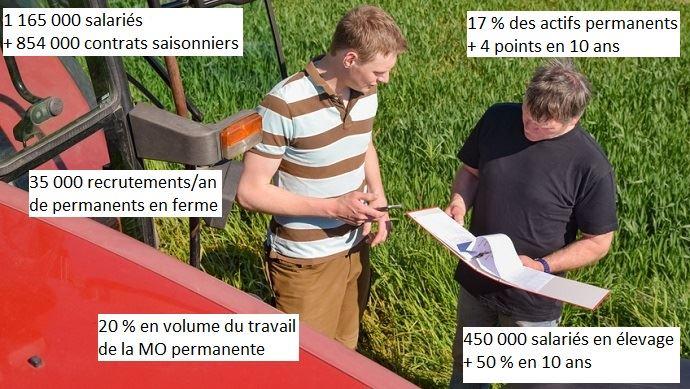 le salariat en agriculture en chiffres
