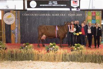 Hématie remporte le concours Rouge flamande