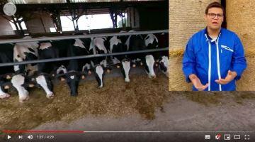 Découvrez lemétier d'éleveur laitier comme si vous étiez sur la ferme