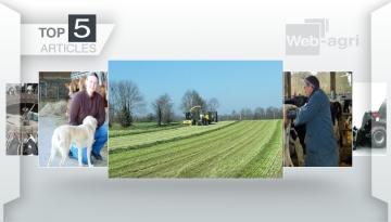 Mise à l'herbe et ensilage précoce font la Une sur Web-agri