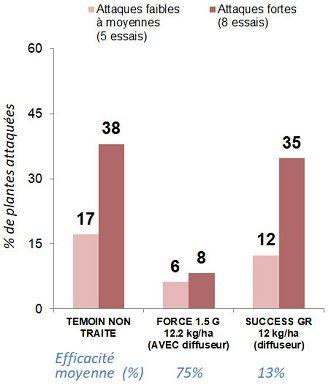 Efficacité sur taupins du Success GR - synthèse d'essais maïs grain et maïs fourrage (2012-2018)