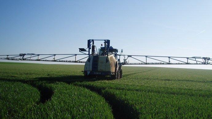 pulvérisateur blé tendre