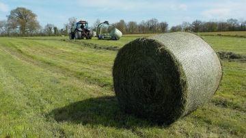 Réussir l'enrubannage d'herbe