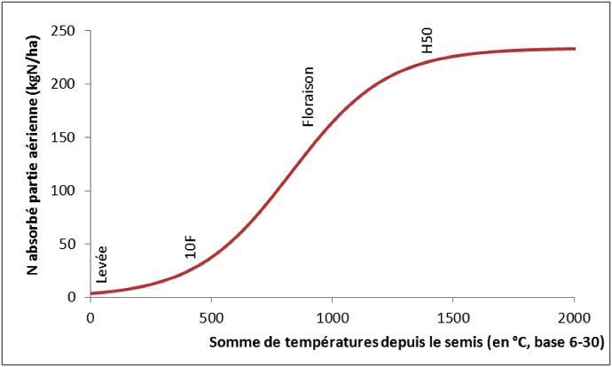 Cinétique d'absorption de l'azote par le maïs