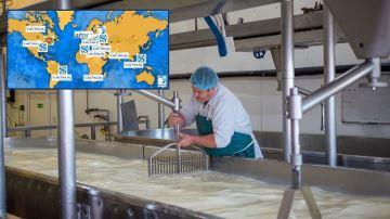 Les leaders laitiers français investissent en masse à l'étranger