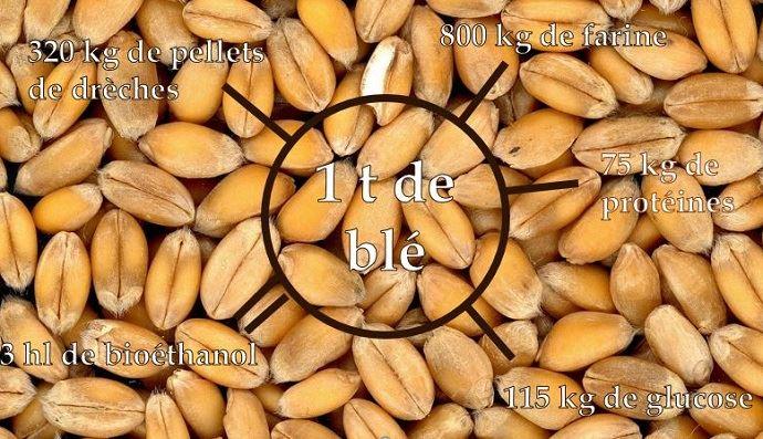 Les produits de l'amidonnerie à partir d'une tonne de blé