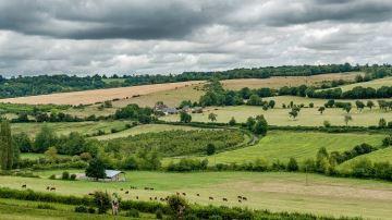 Tous les prix 2018 des terres agricoles en Bretagne