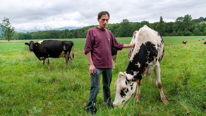 Ludovic Brunet passe beaucoup de temps à observer ses vaches. Cela l'aide à choisir le traitement adapté à chaque animal.