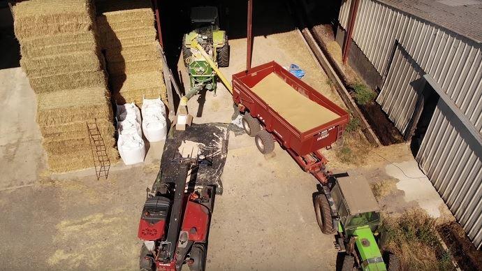 Étienne Fourmont broie une partie de sa récolte d'orge en farine pour la distribuer au robot à ses vaches laitières.