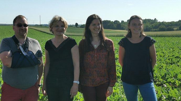 Lancement de la première campagne de betteraves bio en France