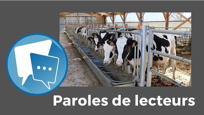 paroles de lecteurs web agri premier velage a 21 mois pour les genisses laitieres