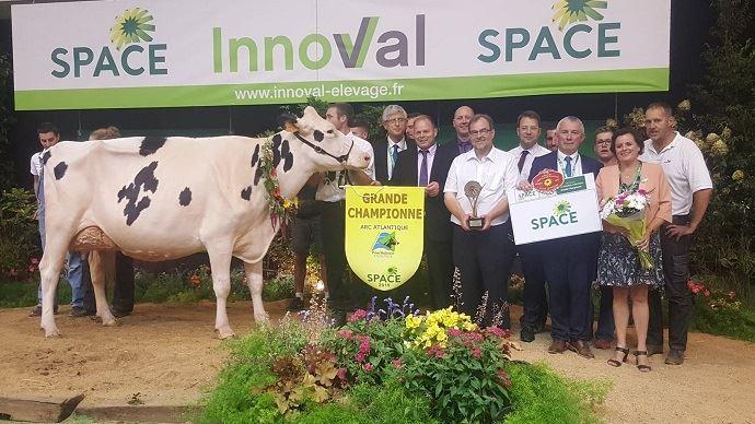 Izella du Mezou, fille de Dempsey Li et propriété du Gaec Bois Brillant/Rey Holstein (49), grande championne du Space 2019.