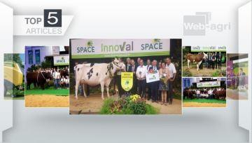 Les concours bovins et l'actu du Space à l'honneur cette semaine