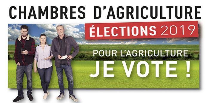 Visuel pour les élections des chambres d'agriculture 2019