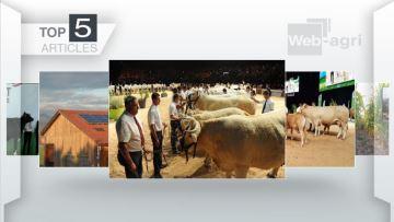 Les concours du Sommet, Lubrizol et le solaire en haut de l'affiche