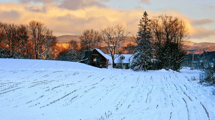 La neige recouvre les champs