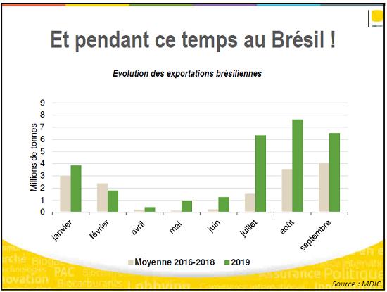 Exportations de maïs brésilien