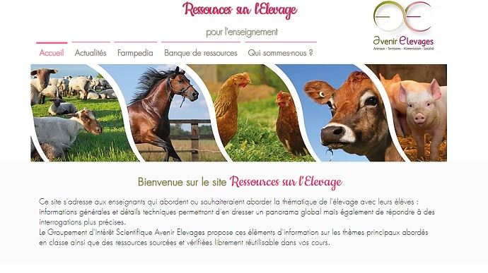 home page du site ressources-elevage.fr