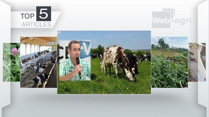 Top articles de Web-agri cette semaine.