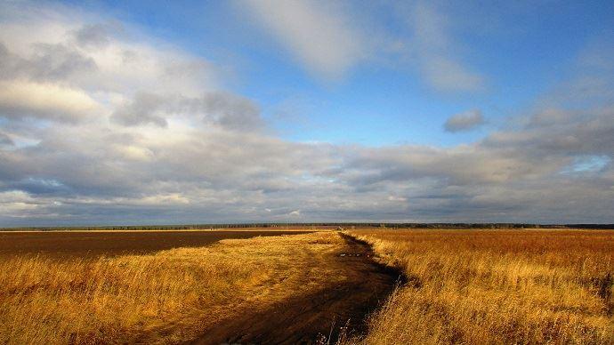 Les productions de grains russe et ukrainienne pourrait doubler en cinq ans