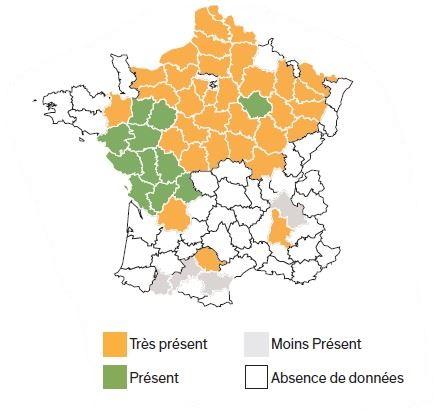 Répartition géographique du vulpin.