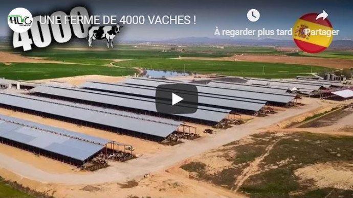 exploitation espagnole hors normes avec plus de 4000 vaches laitières et 55 millions de litres de lait produits