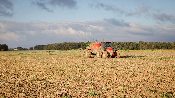 Épandage de glyphosate avant semis