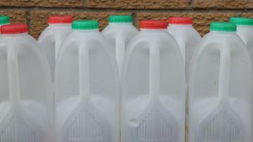 Vous avez jusqu'au 15 février pour faire un don de lait