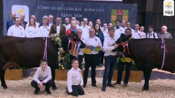 Myrtille (élevage Cuvillier - 62) remporte le concours Rouge flamande
