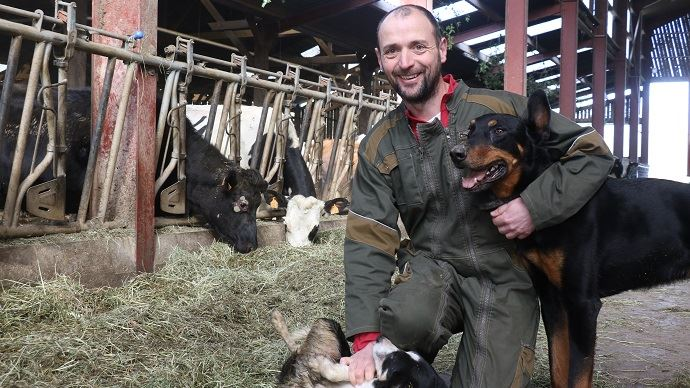 Yves Simon sur son exploitation la ferme du P'tit Gallo (35)