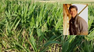 «Avec le maïs population, j'adapte la plante à mes conditions pédoclimatiques»